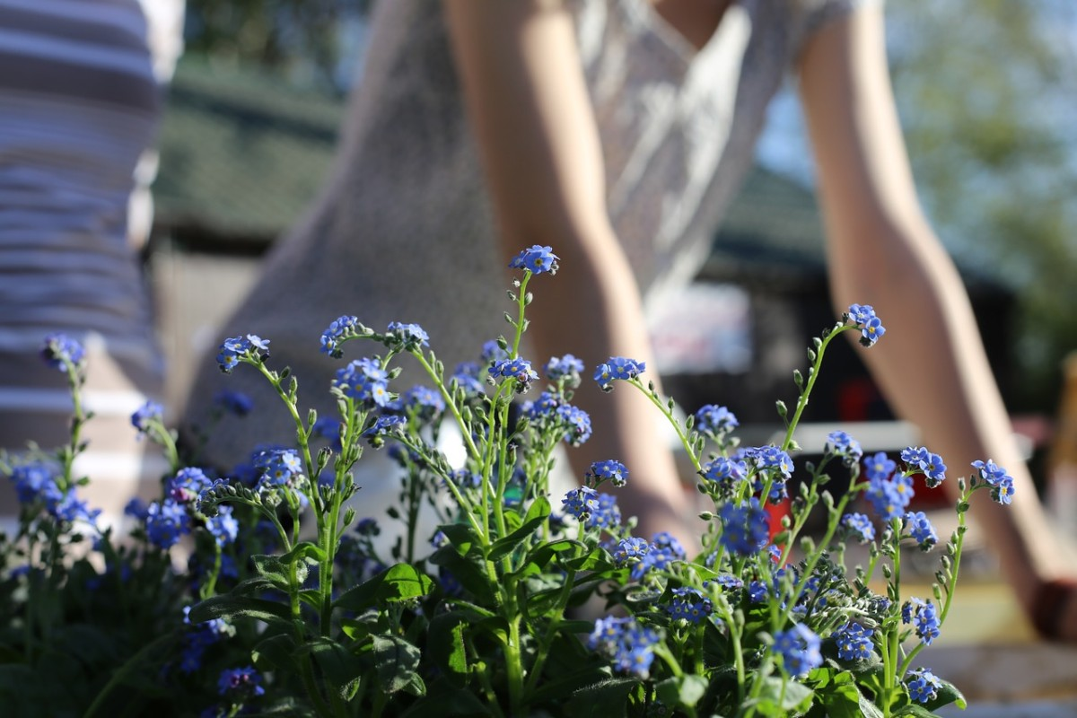 Wie kann Gartenarbeit Rückenschmerzen vorbeugen?